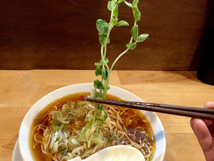 sakuichi10