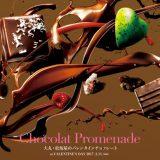 chocolat-promenade2017-1