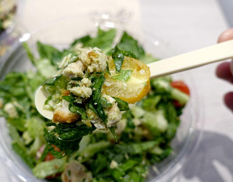 saladbowl13